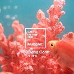 PANTONEが選ぶ2019年のテーマカラーは「Living Coral」(リビングコーラル)